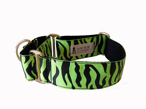 38mm Wide Green Zebra Martingale Dog Collar