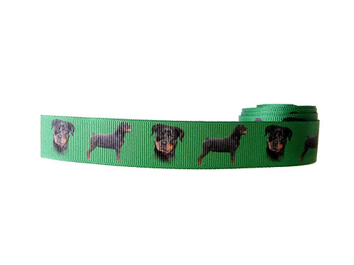 25mm Wide Rottweiler Double Ended Lead