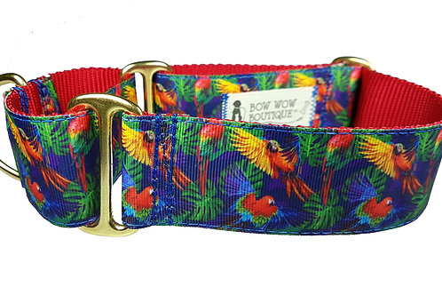 38mm Wide Parrots Martingale Dog Collar
