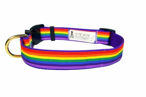 25mm Wide Rainbow Dog Collar