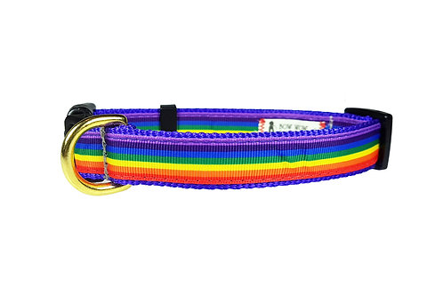 19mm Wide Rainbow Collar
