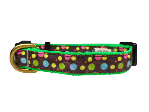 19mm Wide Multi Coloured Dots Dog Collar