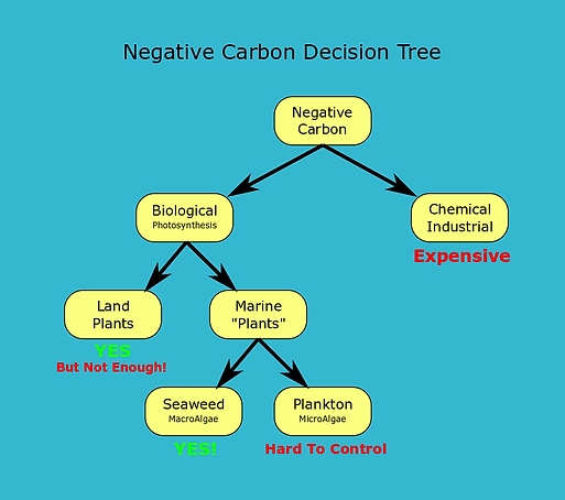 NegativeCarbonDecisionTree.png