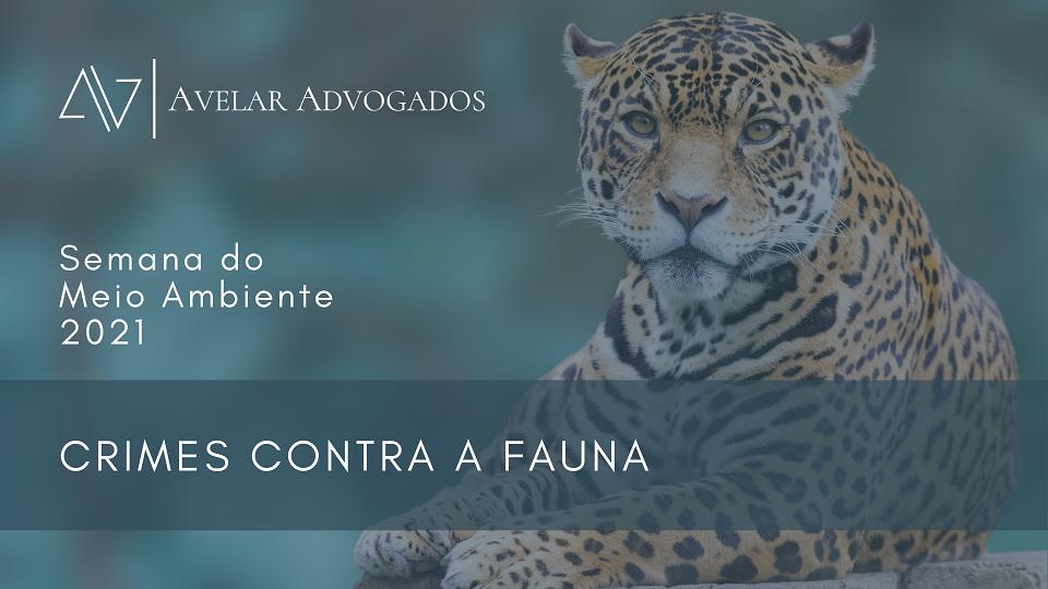 Avelar Advogados - Semana do Meio Ambiente 2021 - Crimes Contra a Fauna