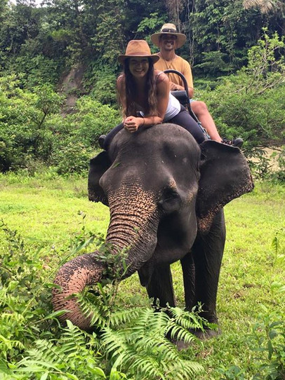 The only time he lets me drive 🐘 #tangkahan #elephant sanctuary