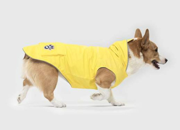 """""""Torrential Tracker"""" Stylish Yellow Raincoat for Dogs"""