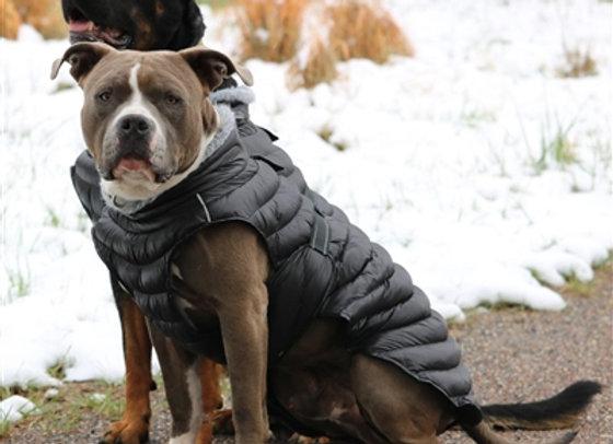 Alpine Puffer Dog Coat in Black