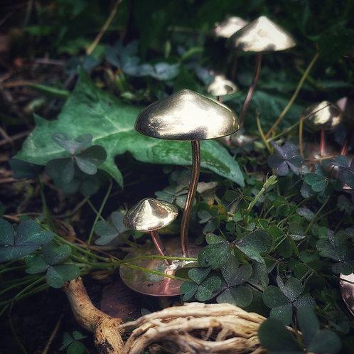 tiny fairy mushrooms