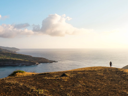 Scenic Oahu trails that hikers of all levels can enjoy