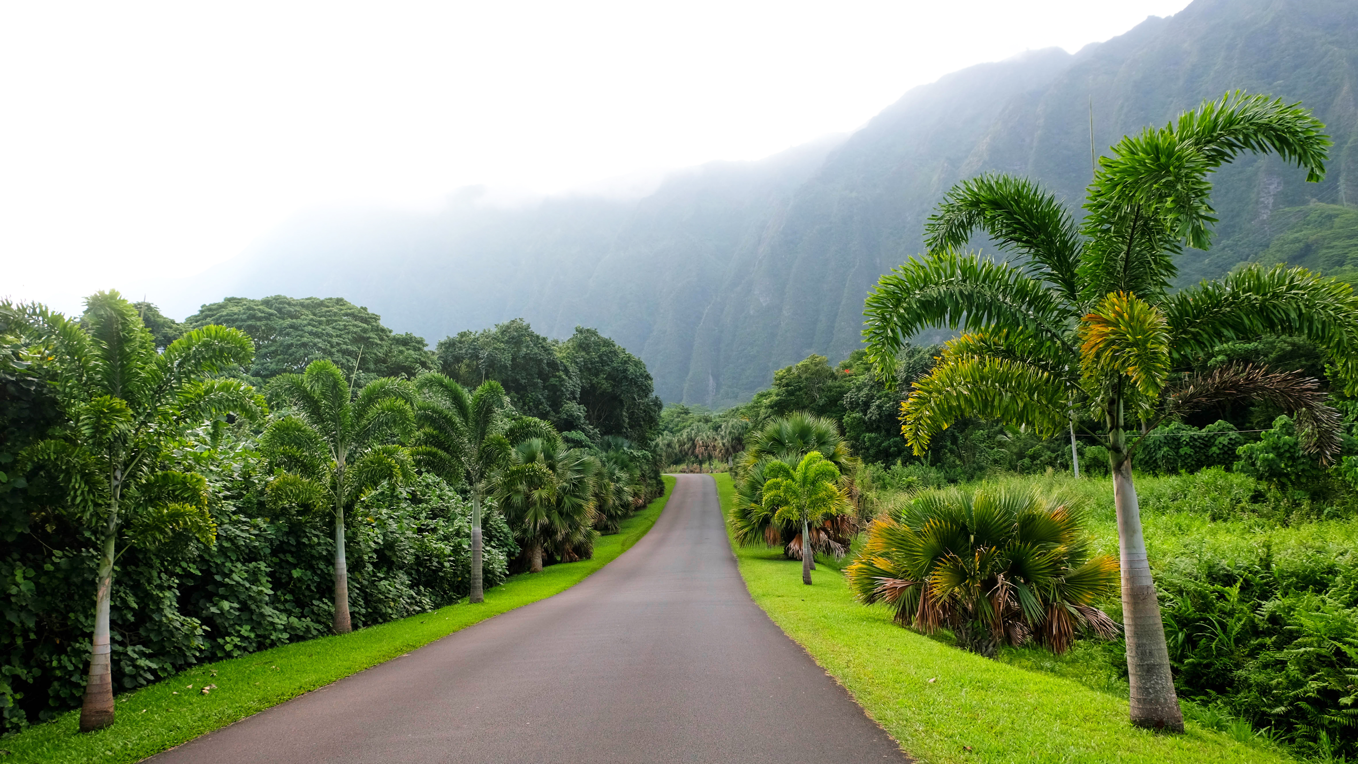 Ho'omaluhia Botanical Garden, Oahu