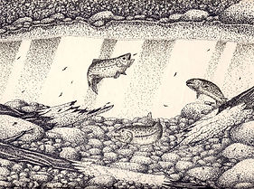 Pen and Ink drawing Sold art work prints available