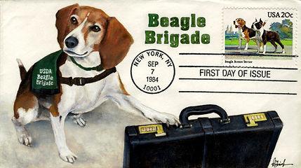 1984BeagleBrigade1.jpg