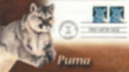 2007FloridaPuma2.jpg