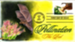 2007PollinationBat1.jpg
