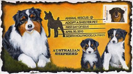 AustralianShepherd1.jpg