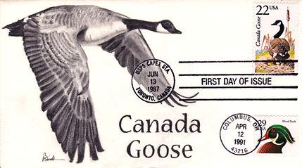 1987-1991CanadaGoose1.jpg