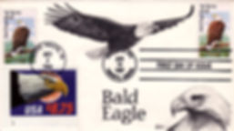 1987-1988BaldEagle1.jpg