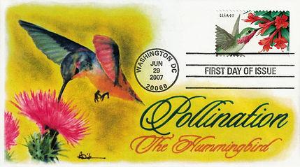 2007PolHummingbird1.jpg