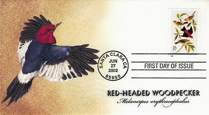 2002Woodpecker1.jpg