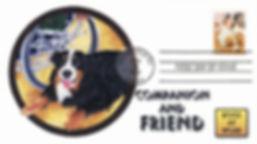 2012DogsCompanion1.jpg