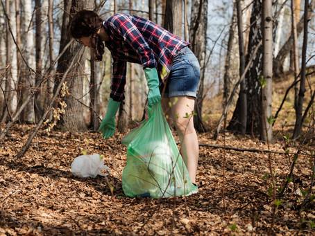 Nettoyage de la forêt, édition 2020