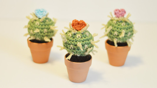 Mother's Day Cactus Free Pattern!
