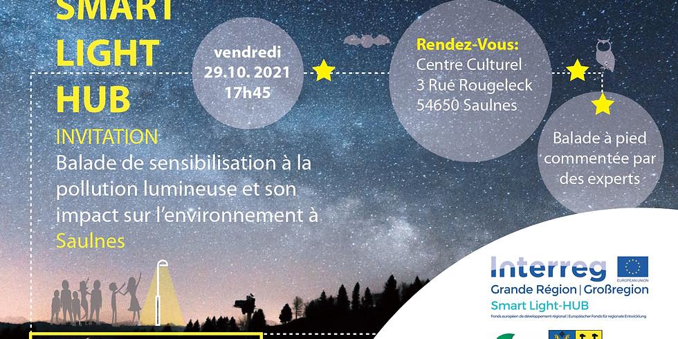 29/10 - Saulnes (FR) - Balade de sensibilisation à la pollution lumineuse et à son impact sur l'environnement