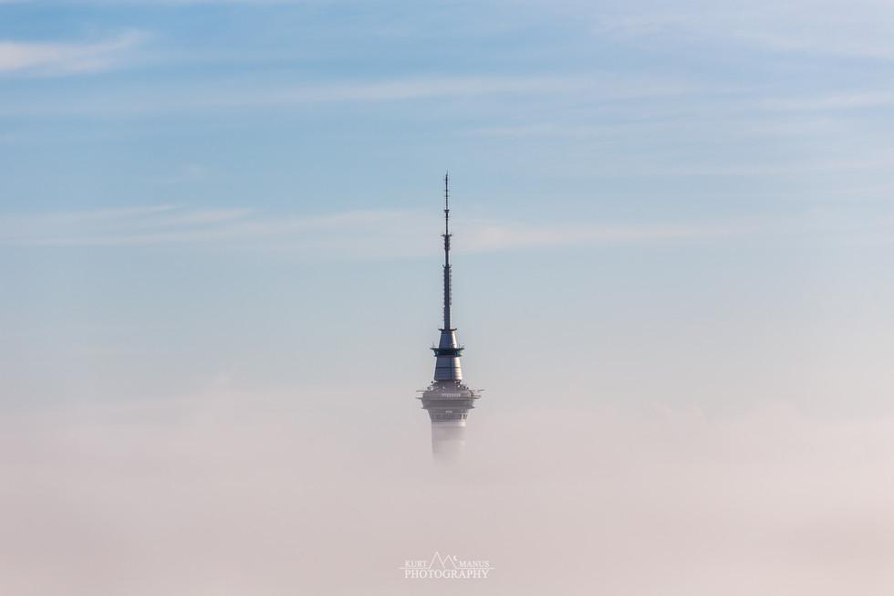 Sky Tower - Auckland (2)