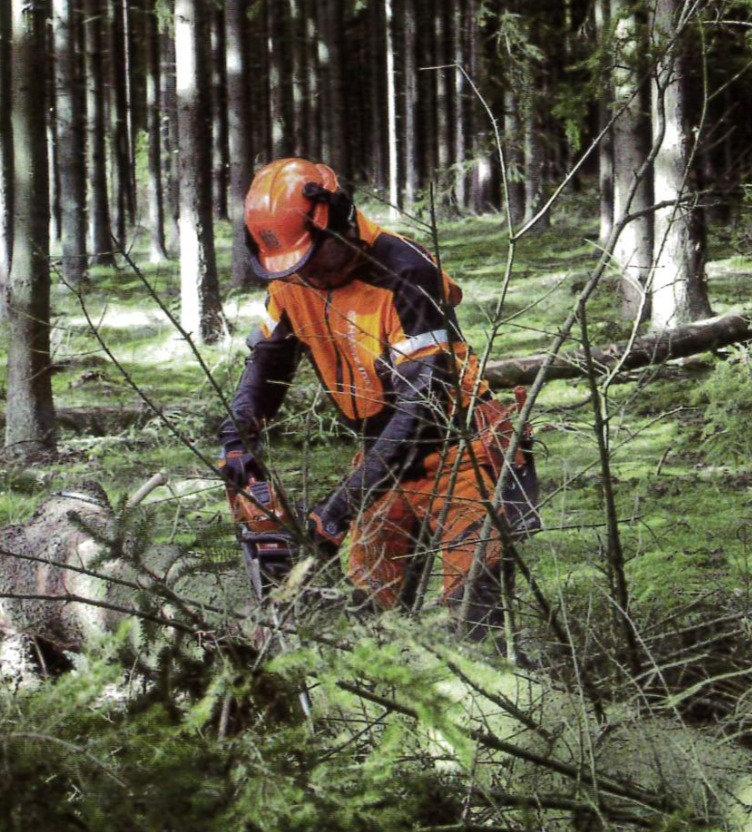 伐木等の業務(18時間)