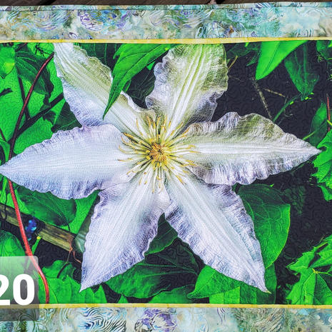 Photo Art Quilt (wall hanging) $120