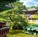 changdeokgung-palace-secret-garden-7XPJN