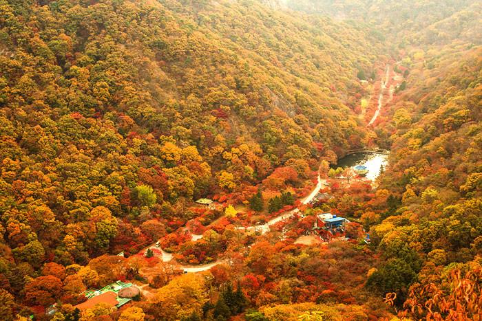 autumn-foliage-naejangsan.jpg