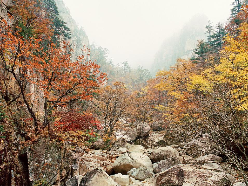 autumn_korea0916.png