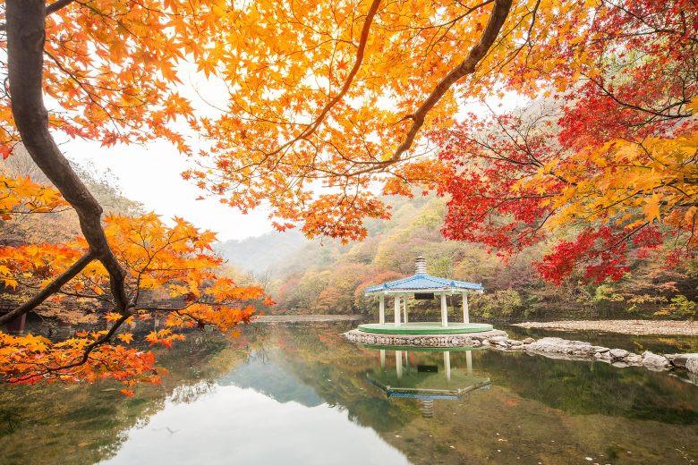 autumn-travel-2.jpg