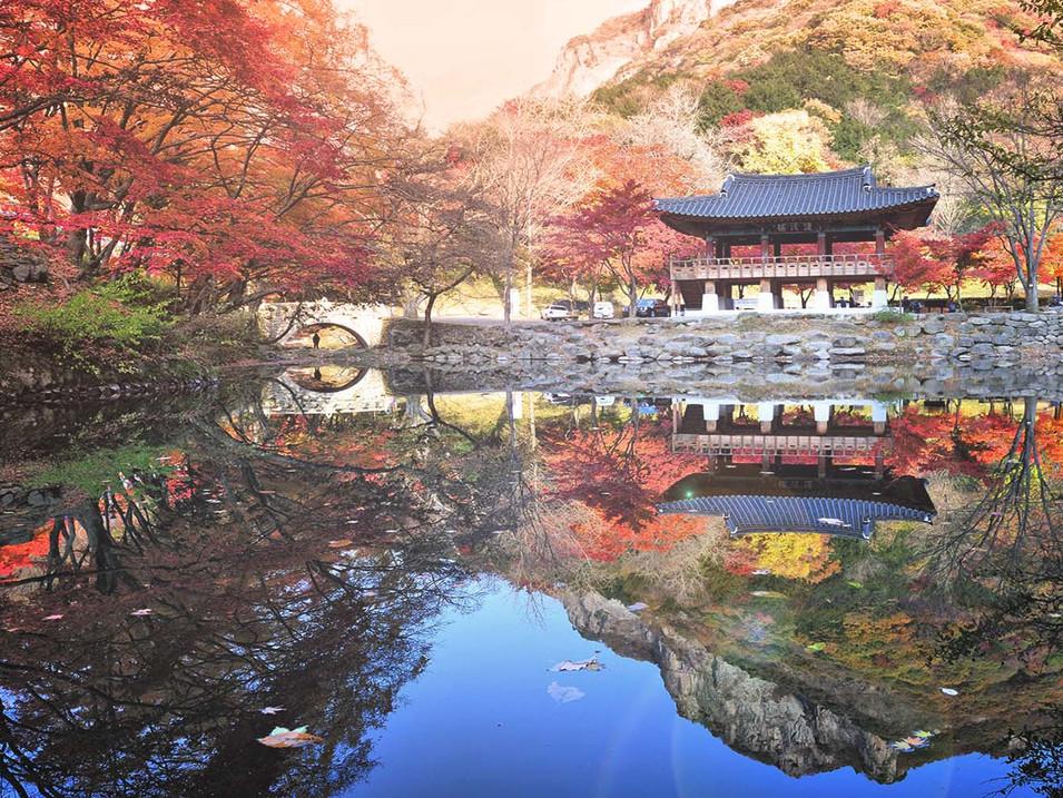 Korea-Fall-Season-Tour-NAEJANGSAN-01.jpg