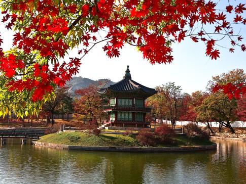 seoul_korea_palace.jpg