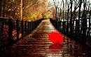 877156-rainy-wallpaper_1.jpg