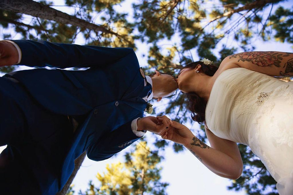 Knotwood Forest - Weddings.jpg