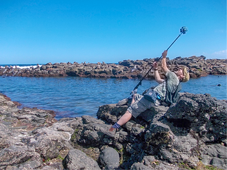Worldview | Steve Spangaro | Protecting Seal Rocks