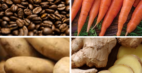 Top Foods for Better Digestion & Digestive Health