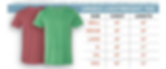 Size chart Lightwieght Tee.PNG