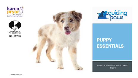 Puppy Essentials Header.png
