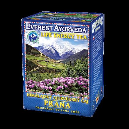 Everest Ayurveda - Prana