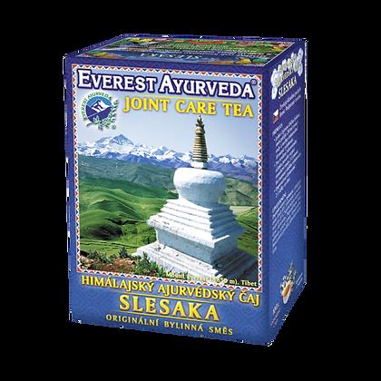 Everest Ayurveda - Slesaka