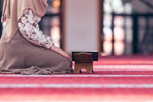 muslim woman.png