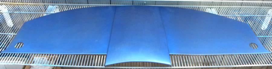 bluelagoncover