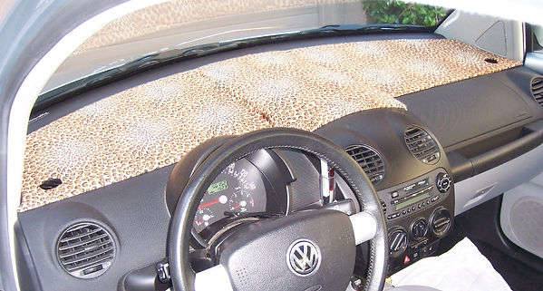 cheetahcoverincar.jpg