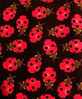 ladybugfabric.jpg