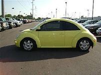 yellowbeetle.jpg