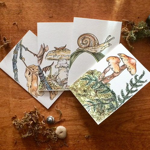 Forest Floor Greeting Cards